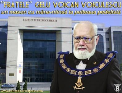 Asasinul numărul 1 al poporului, Gelu Voican Voiculescu în decembrie 1989