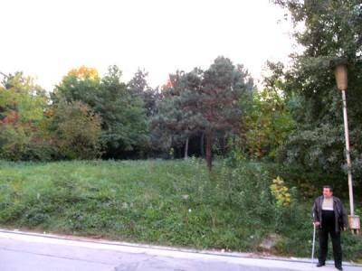 Unde este Coculeanu, in spatele lui, este terenul de 900 mp care duce la spalatorie sus catre stadionul Pitesti, cimitirul eroilor